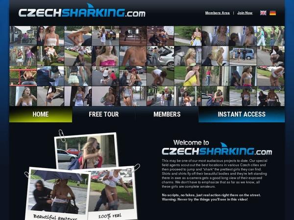 Czechsharking Join Form