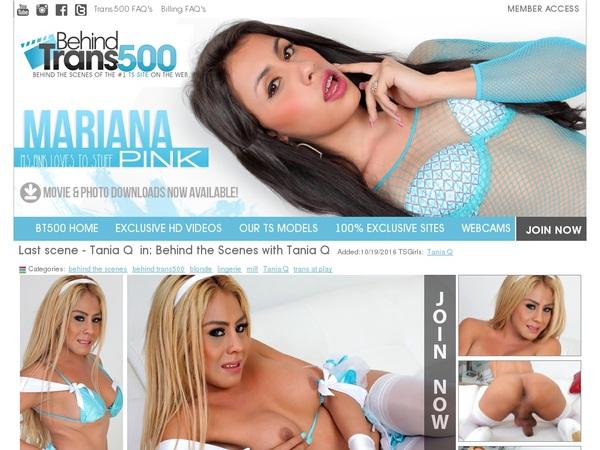 Free Behindtrans500.com Accounts