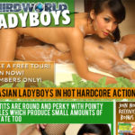 Third World Ladyboys Clips For Sale