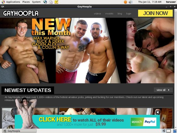 Gay Hoopla Signup Page